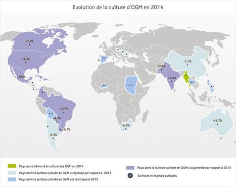 OGM : 181 millions d'hectares cultivés dans le monde en 2014 | CRAKKS | Scoop.it