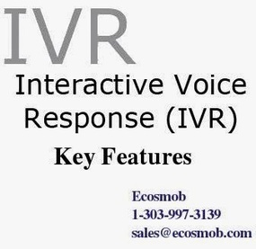 VoIP, Web, Mobile and SEO: Five Important Features to Look For in IVR System | Asterisk Services & Solution | Scoop.it