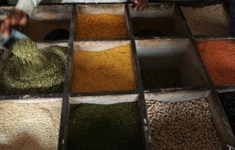 Mettre lentilles et pois chiches dans son assiette, une bonne action pour le climat | Planete DDurable | Scoop.it