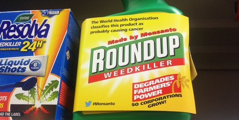 What does the JMPR's verdict on glyphosate really mean? | Organic Farming | Scoop.it