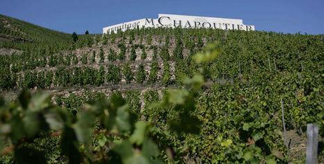 """Michel Chapoutier: """"J'ai toujours refusé le snobisme viticole""""   Grande Passione   Scoop.it"""