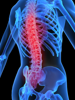 Treatments for Low Back Pain - Charlotte Chiropractor   How Chiropractor Can Help You To Get Rid From Pain   Scoop.it