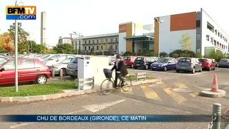 Viande et charcuterie cancérogènes: Les bouchers d'Aquitaine en colère | BIENVENUE EN AQUITAINE | Scoop.it