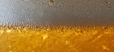 Il y a 5.000 ans, les Chinois brassaient déjà de la bière | Gastronomie Française 2.0 | Scoop.it