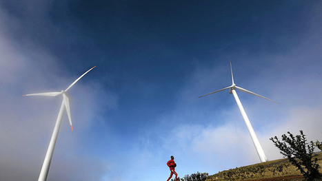 SA set to profit from wind power | EnviroJMS | Scoop.it