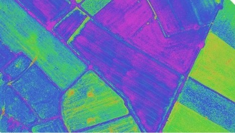 Drones for Agriculture: senseFly SA   phenotyping   Scoop.it