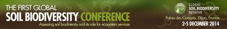 First Global Soil Biodiversity Conference- Assessing soil biodiversity and its role for ecosystem services (décembre 2014-Dijon) | PSDR - Pour et Sur le Développement Régional en Midi-Pyrénées | Scoop.it