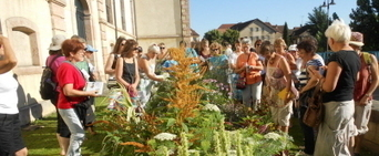 Visite : fleurs des villes et fleurs des champs - Le JSL | L'actualité sur le métier de fleuriste | Scoop.it
