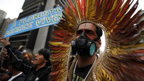 'They threaten to kill me, kidnap me': Sharp rise in environmental activists being killed | Global politics | Scoop.it