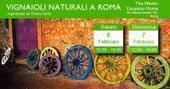Vignaioli Naturali a Roma il 6 e 7 febbraio 2016 - Into the Wine   Into the Wine   Scoop.it
