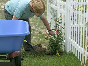 Fertilizantes para Jardines | Decoración de Jardines Pequeños y ... | Horticultura | Scoop.it