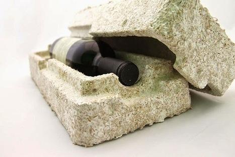 Bioplástico: cogumelos são o plástico do futuro | Criatividade, inovação, marketing | Scoop.it