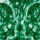 De l'empathie à l'apprentissage, le formidable potentiel des neurones miroirs | Développement personnel | Scoop.it
