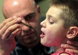 Seizure Disorders And Medical Marijuana   Seizure Disorders And Medical Marijuana   Scoop.it