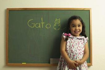 The Advantages of Foreign Languages in Elementary Schools | La perdida de la lengua | Scoop.it