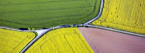 Biodiversité : l'Europe ne devrait pas atteindre ses objectifs | Questions de développement ... | Scoop.it