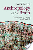 Anthropology of the Brain   Bounded Rationality and Beyond   Scoop.it