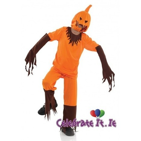 Unique Homemade Halloween Costumes for Babies and Toddlers | Costume Shop and Party Supplies Ireland  online | Scoop.it
