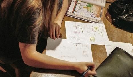 Toward a More Productive Conversation About Homework | Newington Professional Reading | Scoop.it