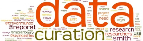 """Syllabus for Data, Data Practices, and Data Curation"" by Christine L. Borgman 