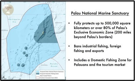 Full protection for 80% of Palau's national maritime territory | Coastal Restoration | Scoop.it