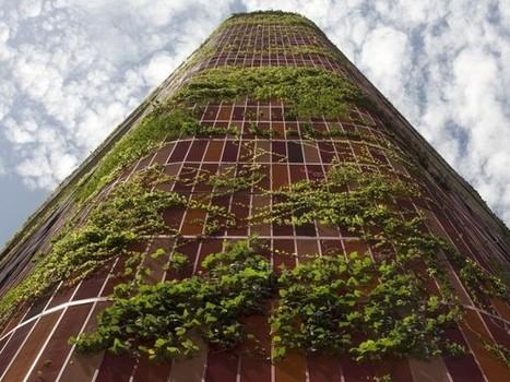 Une tour verte a poussé à Singapour | Dans l'actu | Doc' ESTP | Scoop.it