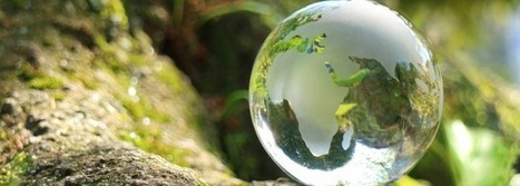 Économie circulaire : le fromage peut être une énergie renouvelable | Quelle Energie : Le magazine | Economie circulaire | Scoop.it