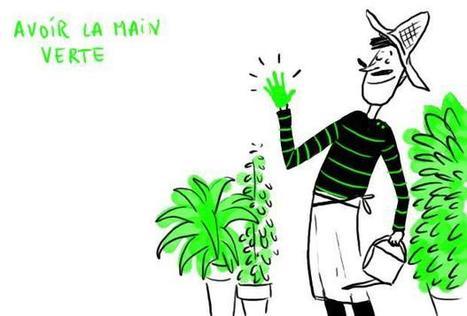 Les expressions françaises : le corps | Frenchbook : PE-PO | Scoop.it