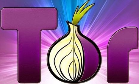 #Sécurité: #Torsploit – Un #Malware anti - #Tor développé pour le #FBI pour détruire l'#anonymat | Ciberseguridad + Inteligencia | Scoop.it