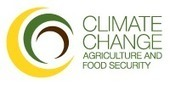 Key Conference Session: Science-based policy actions needed to achieve food security under a changing climate | CGIAR Climate | Food Policy News | Scoop.it