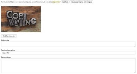 Ottimizzazione sito web: a cosa prestare attenzione - Testi e contenuti per siti web | Web Content Enjoyneering | Scoop.it