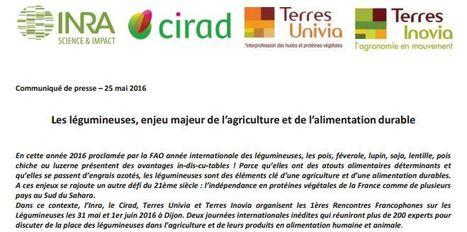 Les légumineuses, enjeu majeur de l'agriculture et de l'alimentation durable (pdf) | Agriculture durable | Scoop.it