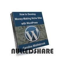 How to Develop Money-Making Niche » Nulled Scripts, php, WSOs - NulledShare.com | How to Develop Money-Making Niche | Scoop.it
