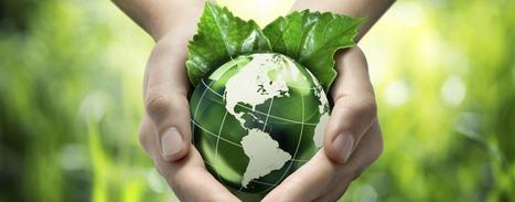 De l'importance de l'éducation environnementale | Education au Maghreb | Scoop.it