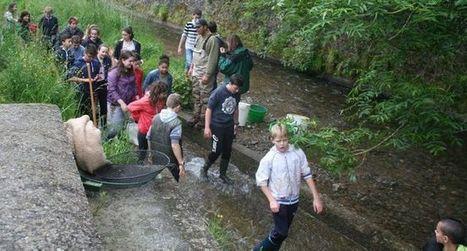 Les collégiens au fil de l'eau | CDI collège Cransac | Scoop.it