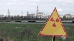Signs of radiation recovery in Chernobyl wildlife   Topics of my interest   Scoop.it
