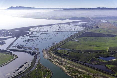 Bay Area's future depends on managing rising sea levels | Soggy Science | Scoop.it