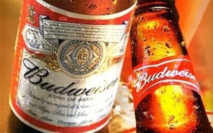 Hãng bia lớn nhất thế giới sắp vào Việt Nam | Vietnam Brands | Scoop.it