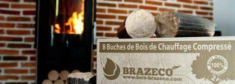 BRAZECO, producteur français de bois densifié et pionnier de sa vente en ligne   GRANULE ET PELLET ENERGIE France   Scoop.it