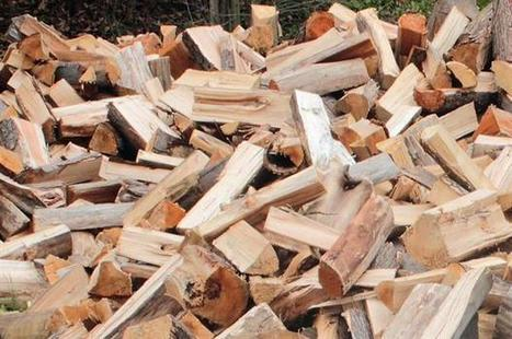 "Maker and supplier of ""unsafe"" log splitter fined following injury 