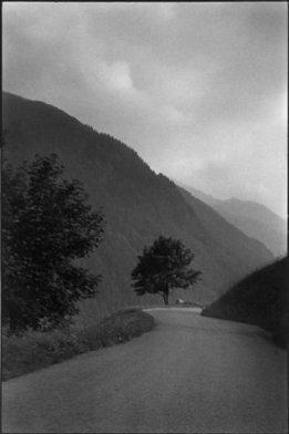Ce que sait la montagne, aux sources des philosophies de l'environnement - La Vie des idées | Transition énergétique locale | Scoop.it