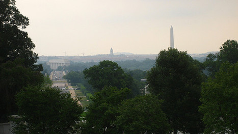 11 ed tech startups looking to make an impact in D.C. | EDified | Scoop.it