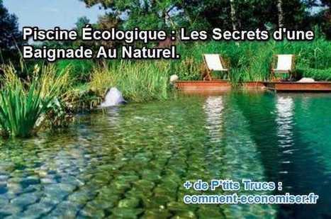 Piscine Écologique : Les Secrets d'une Baignade Au Naturel. | Jardin écologique | Scoop.it