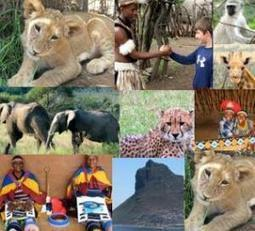 Gays as Accidental Anti-GayTourists in Africa – The Lioness and the Wallet | Gay Travel | Scoop.it