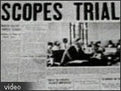 Evolution: Library: Scopes Trial- PRIMARY DOCUMENT #2 | Scopes Trail | Scoop.it