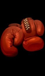 Boxing Universe - Applications Android sur GooglePlay | Best android apps on the market | Scoop.it