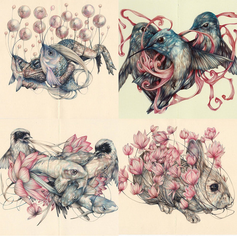 New Detailed Colored Pencil Drawings of Entangled Flora and Fauna by Marco Mazzoni | Inspiration et créativité | Scoop.it