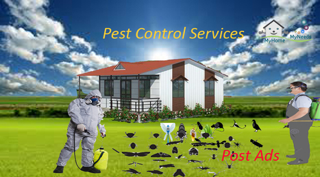 Pest Control Services in Coimbatore - Myhome-myneeds.com | Home Needs in Chennai | Scoop.it