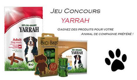 Gagnez des produits Yarrah pour votre chien ! - Femme Attitude Magazine en ligne tendance et branché | Femme Attitude Famille, Maison | Scoop.it