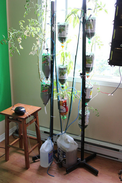 Canadian firm develops 'open source' hydroponics system - iTWire | Heron | Scoop.it